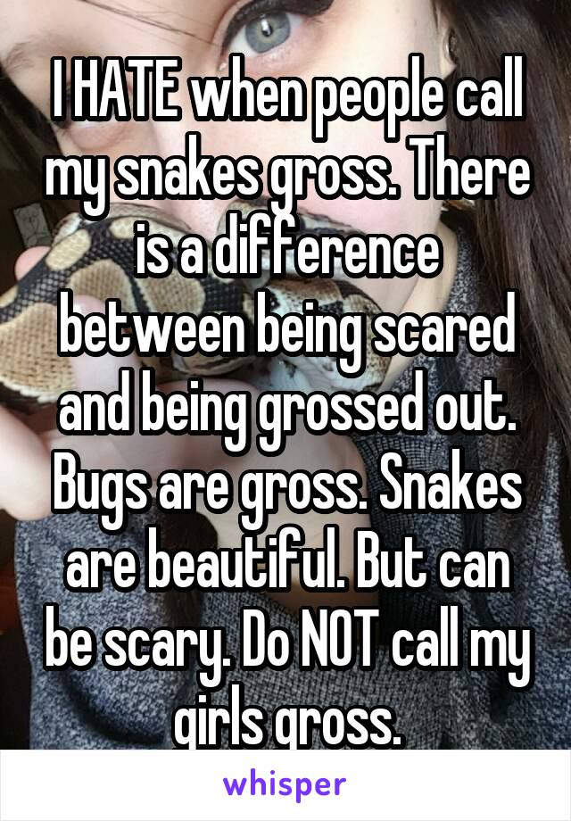 I HATE when people call my snakes gross. There is a difference between being scared and being grossed out. Bugs are gross. Snakes are beautiful. But can be scary. Do NOT call my girls gross.