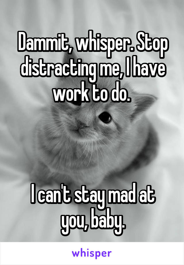 Dammit, whisper. Stop distracting me, I have work to do.     I can't stay mad at you, baby.