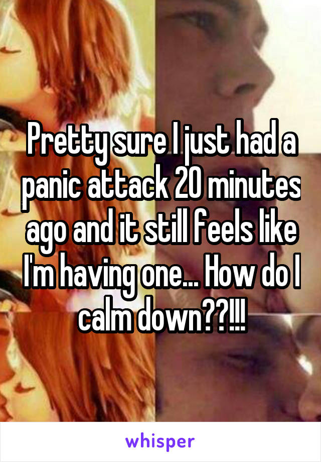 Pretty sure I just had a panic attack 20 minutes ago and it still feels like I'm having one... How do I calm down??!!!