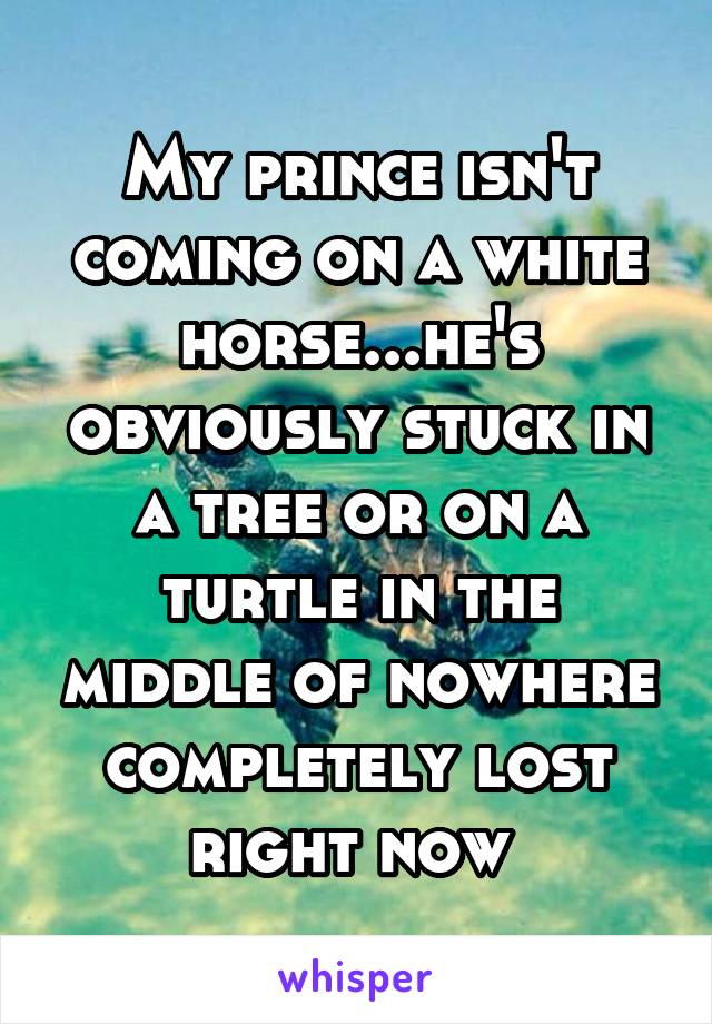 My prince isn't coming on a white horse...he's obviously stuck in a tree or on a turtle in the middle of nowhere completely lost right now