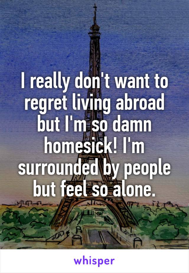I really don't want to regret living abroad but I'm so damn homesick! I'm surrounded by people but feel so alone.