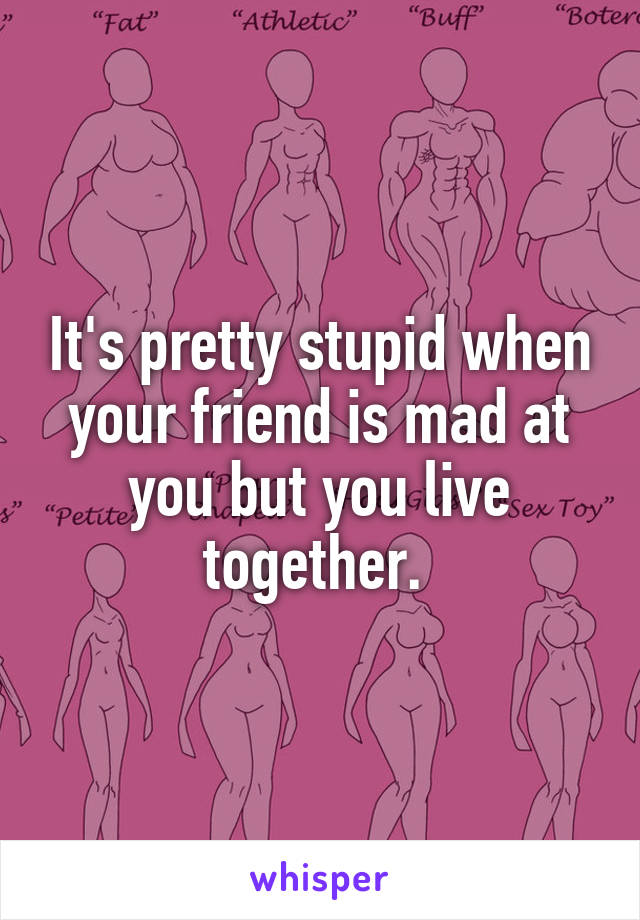 It's pretty stupid when your friend is mad at you but you live together.