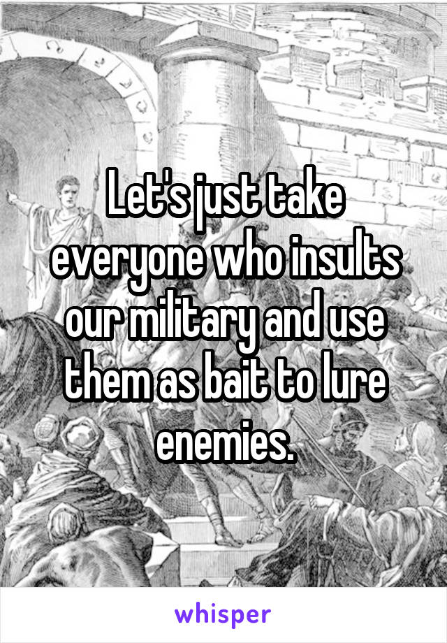 Let's just take everyone who insults our military and use them as bait to lure enemies.