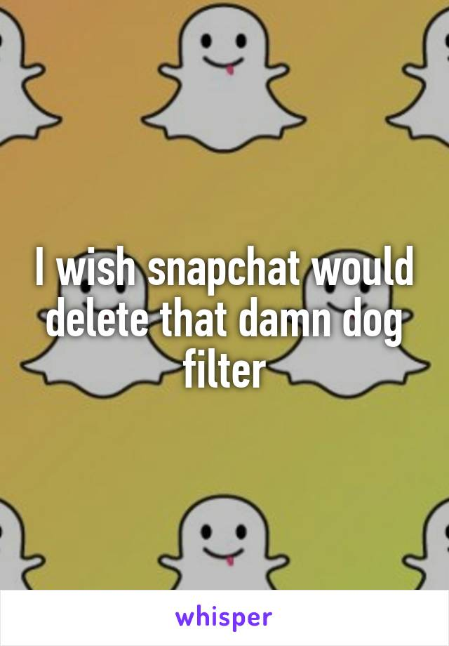 I wish snapchat would delete that damn dog filter