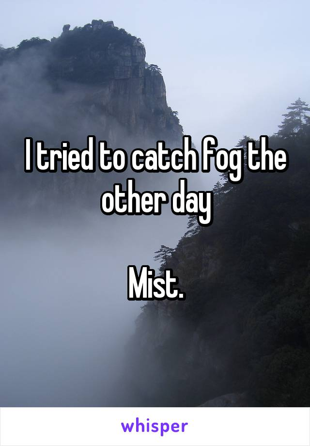I tried to catch fog the other day  Mist.