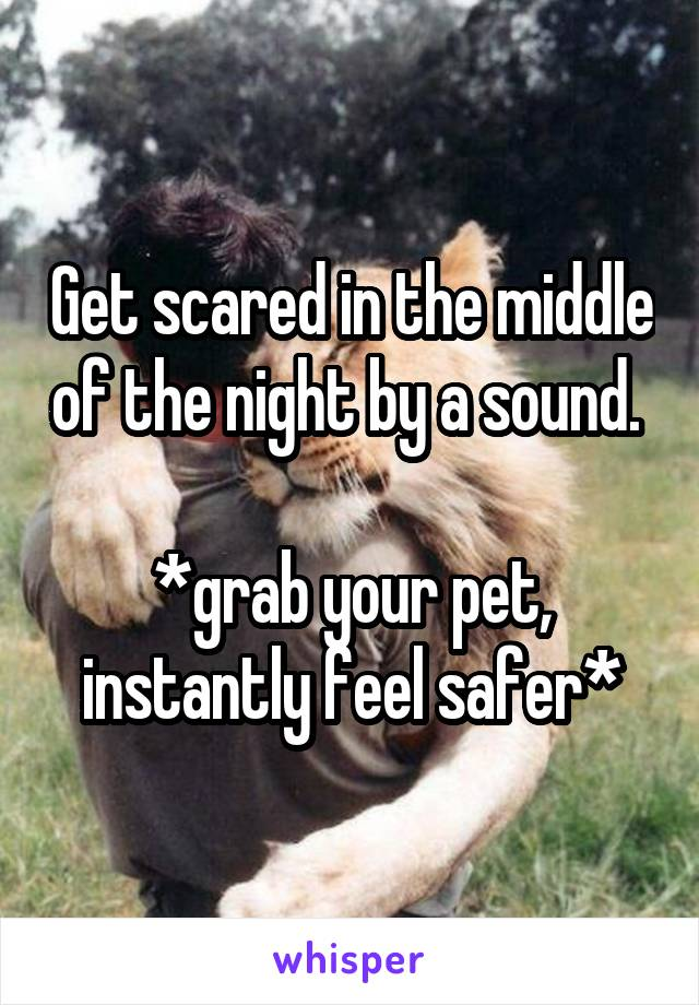 Get scared in the middle of the night by a sound.   *grab your pet, instantly feel safer*