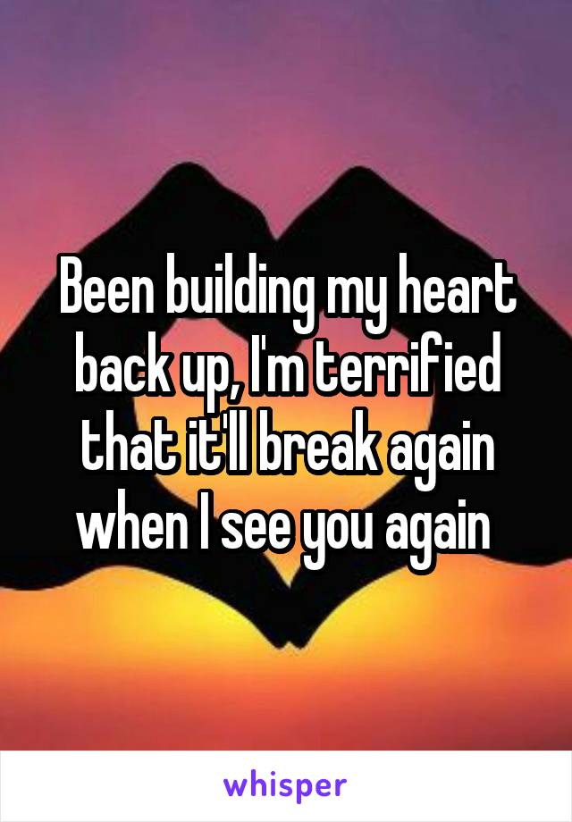 Been building my heart back up, I'm terrified that it'll break again when I see you again
