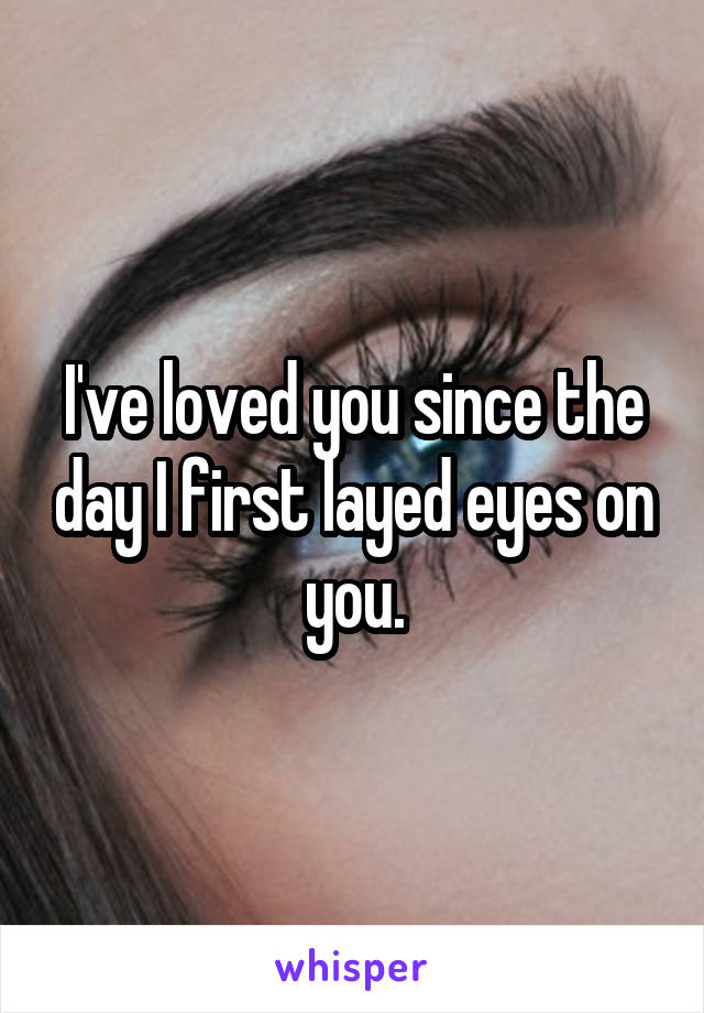 I've loved you since the day I first layed eyes on you.