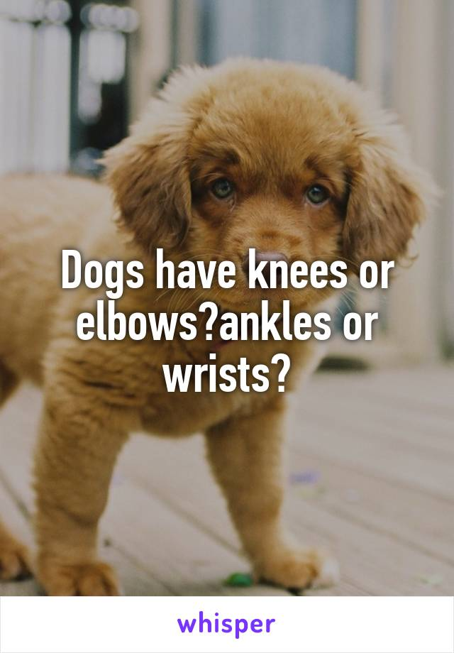 Dogs have knees or elbows?ankles or wrists?