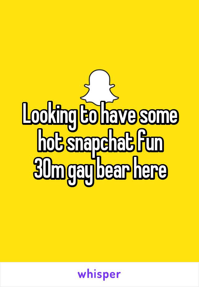 gay bear snapchat