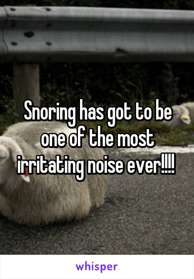 Snoring has got to be one of the most irritating noise ever!!!!