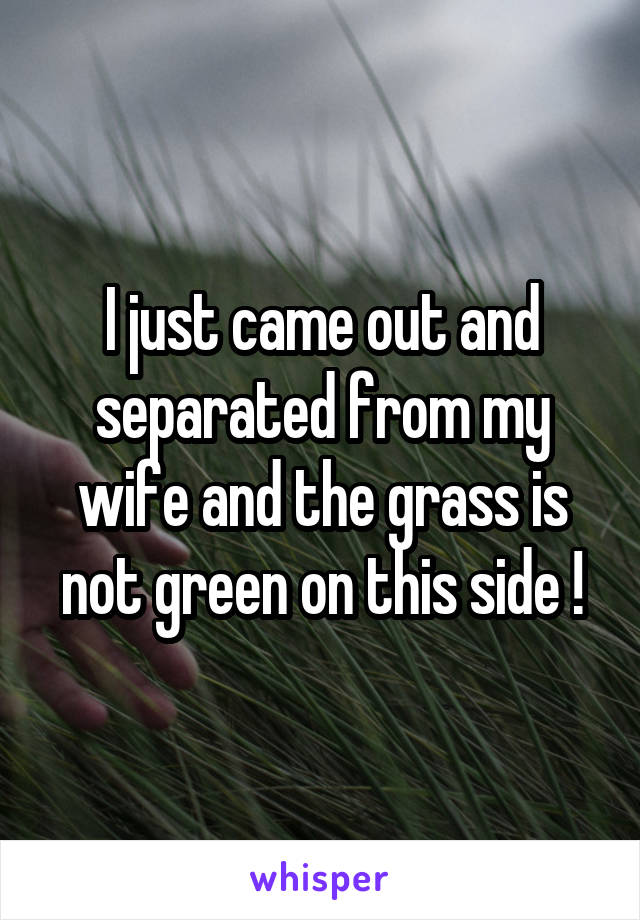 I just came out and separated from my wife and the grass is not green on this side !