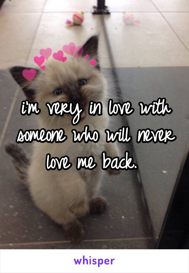 i'm very in love with someone who will never love me back.