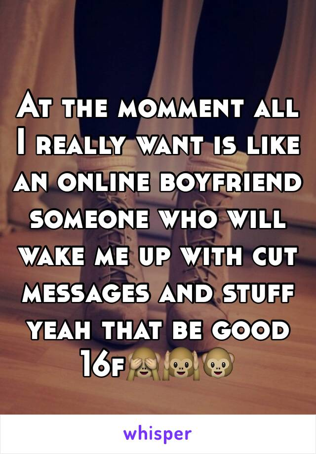 At the momment all I really want is like an online boyfriend someone who will wake me up with cut messages and stuff yeah that be good 16f🙈🙉🐵