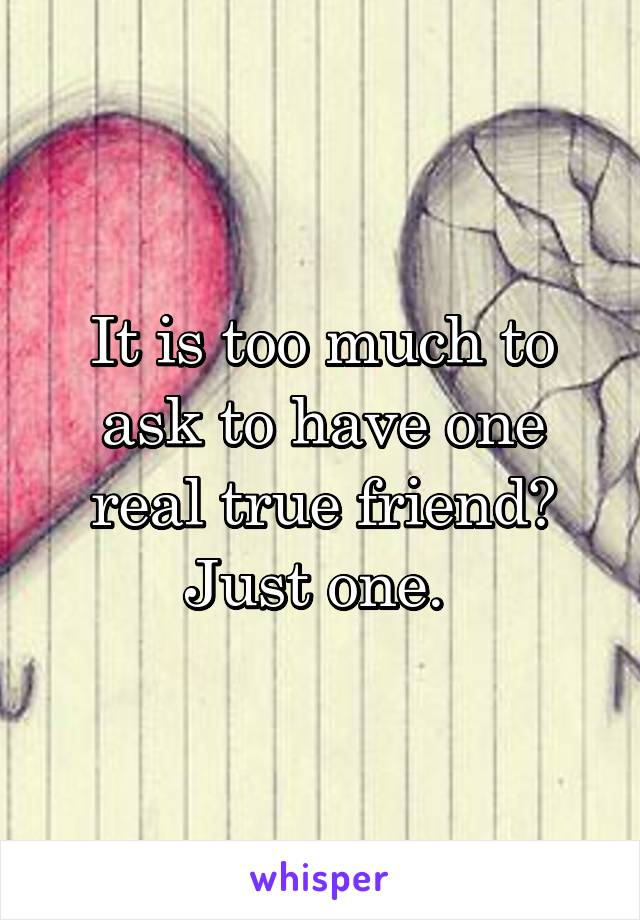 It is too much to ask to have one real true friend? Just one.