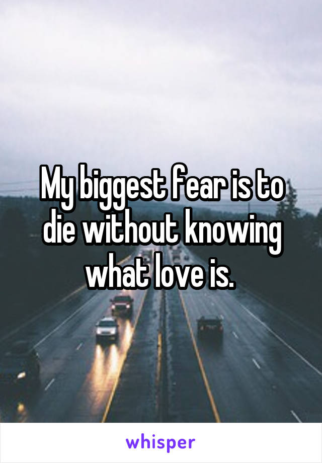 My biggest fear is to die without knowing what love is.