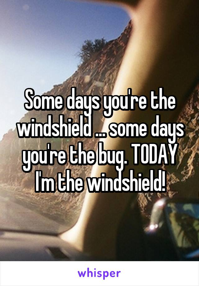 Some days you're the windshield ... some days you're the bug. TODAY I'm the windshield!