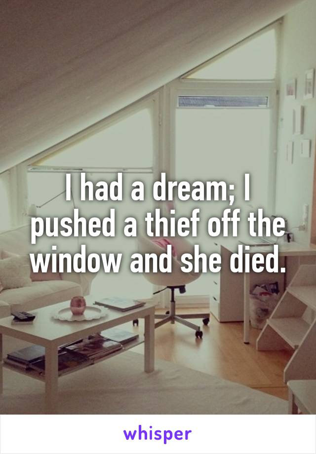 I had a dream; I pushed a thief off the window and she died.