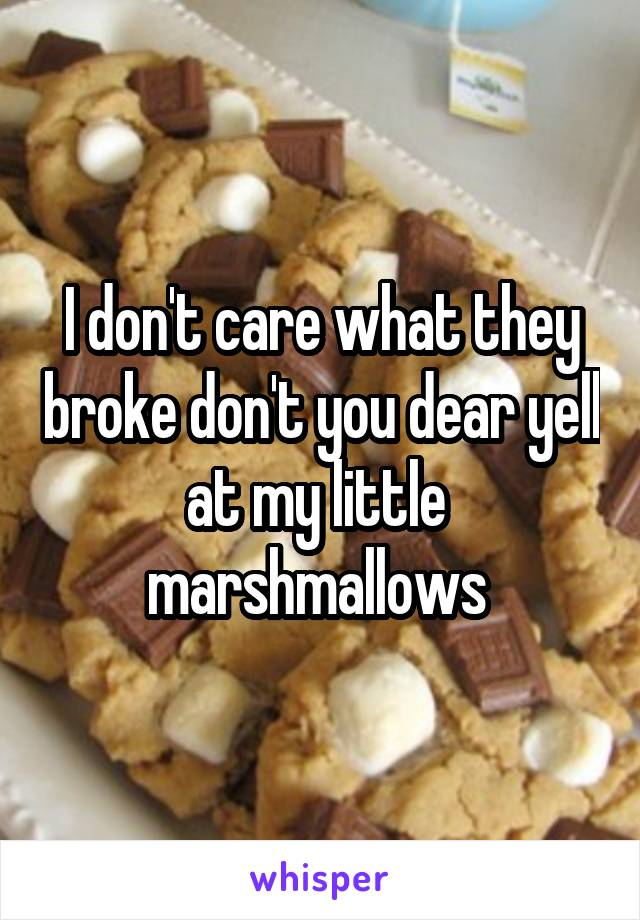 I don't care what they broke don't you dear yell at my little  marshmallows