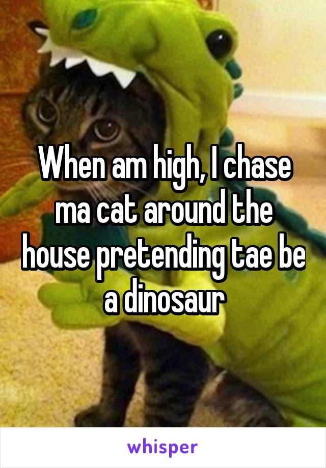 When am high, I chase ma cat around the house pretending tae be a dinosaur