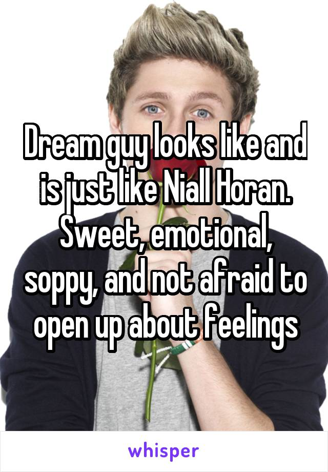 Dream guy looks like and is just like Niall Horan. Sweet, emotional, soppy, and not afraid to open up about feelings