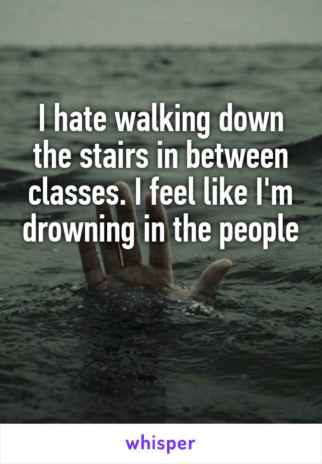 I hate walking down the stairs in between classes. I feel like I'm drowning in the people