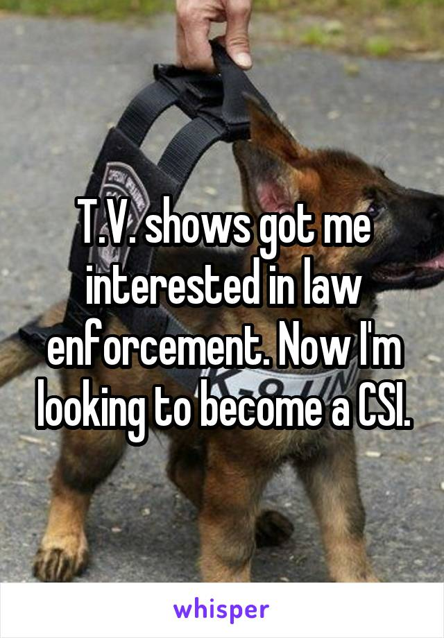 T.V. shows got me interested in law enforcement. Now I'm looking to become a CSI.
