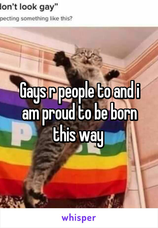 Gays r people to and i am proud to be born this way