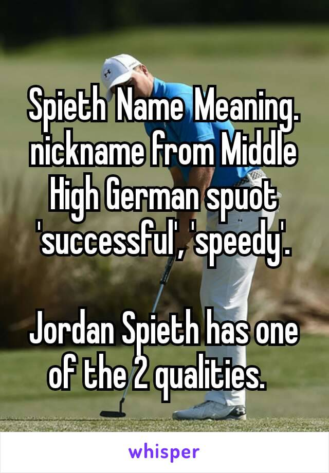 Spieth Name Meaning  nickname from Middle High German spuot