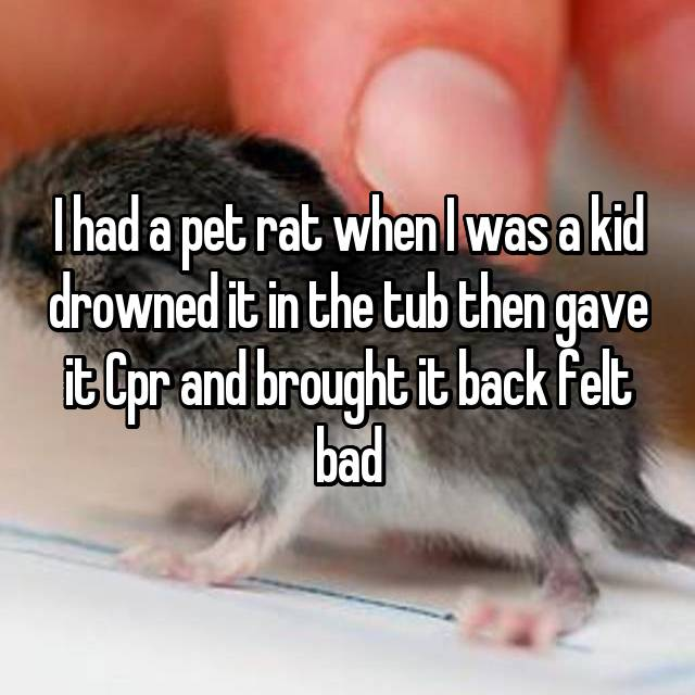I had a pet rat when I was a kid drowned it in the tub then gave it Cpr and brought it back felt bad