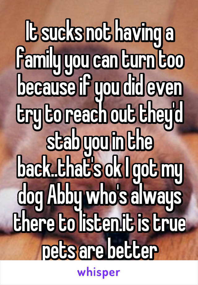 It sucks not having a family you can turn too because if you did even try to reach out they'd stab you in the back..that's ok I got my dog Abby who's always there to listen.it is true pets are better