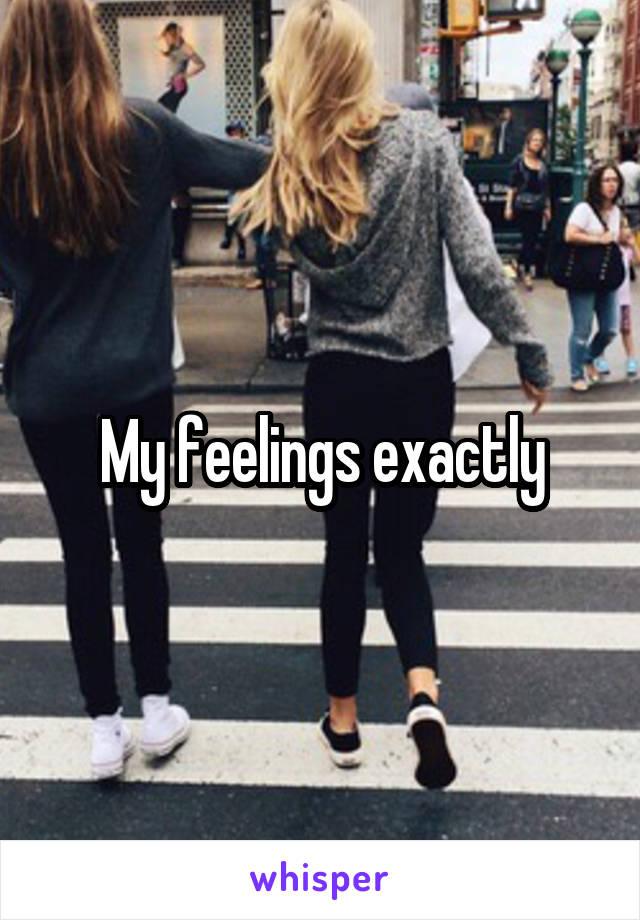 My feelings exactly