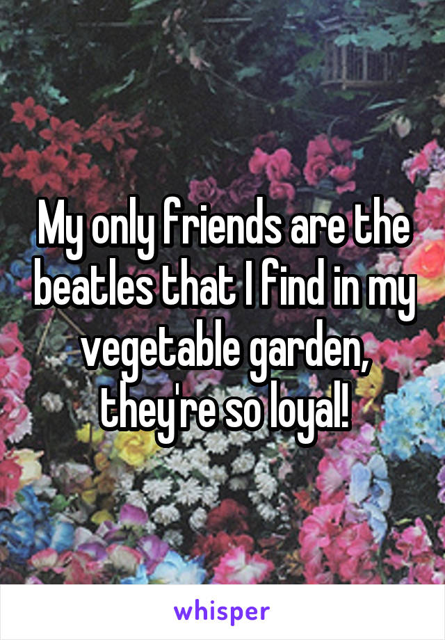 My only friends are the beatles that I find in my vegetable garden, they're so loyal!