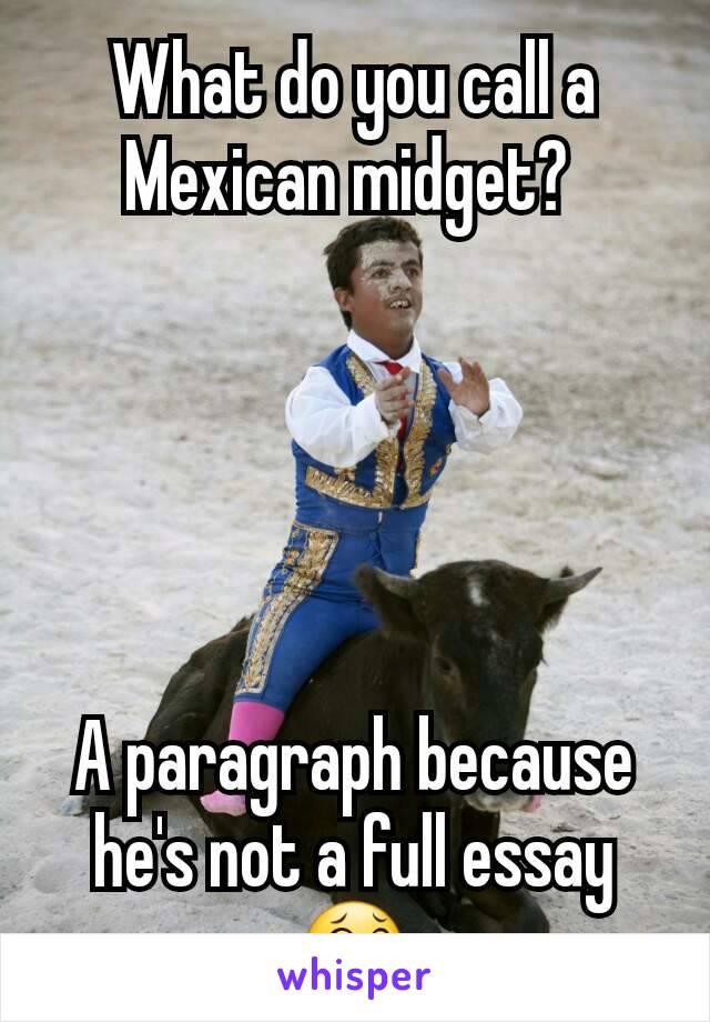 Mexican midget essay joke college paper academic service