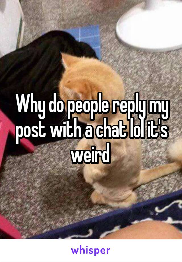 Why do people reply my post with a chat lol it's weird
