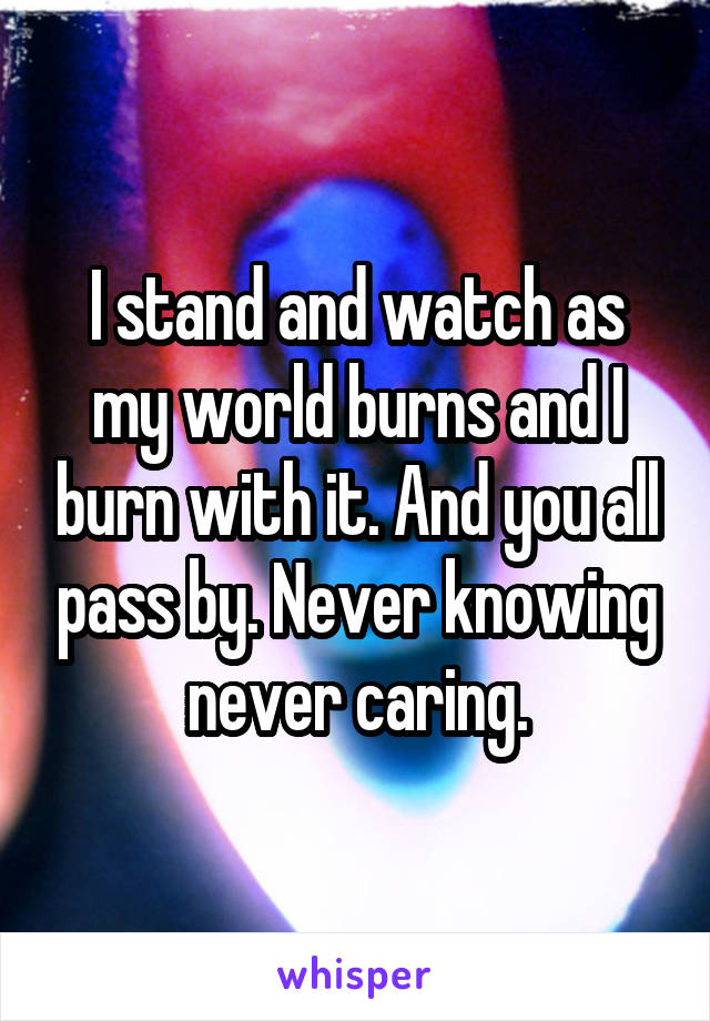 I stand and watch as my world burns and I burn with it. And you all pass by. Never knowing never caring.
