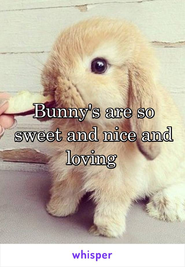 Bunny's are so sweet and nice and loving