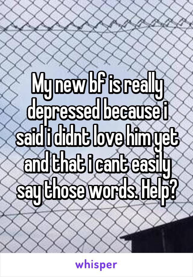 My new bf is really depressed because i said i didnt love him yet and that i cant easily say those words. Help?