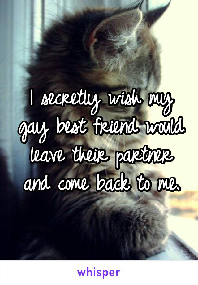 I secretly wish my gay best friend would leave their partner and come back to me.