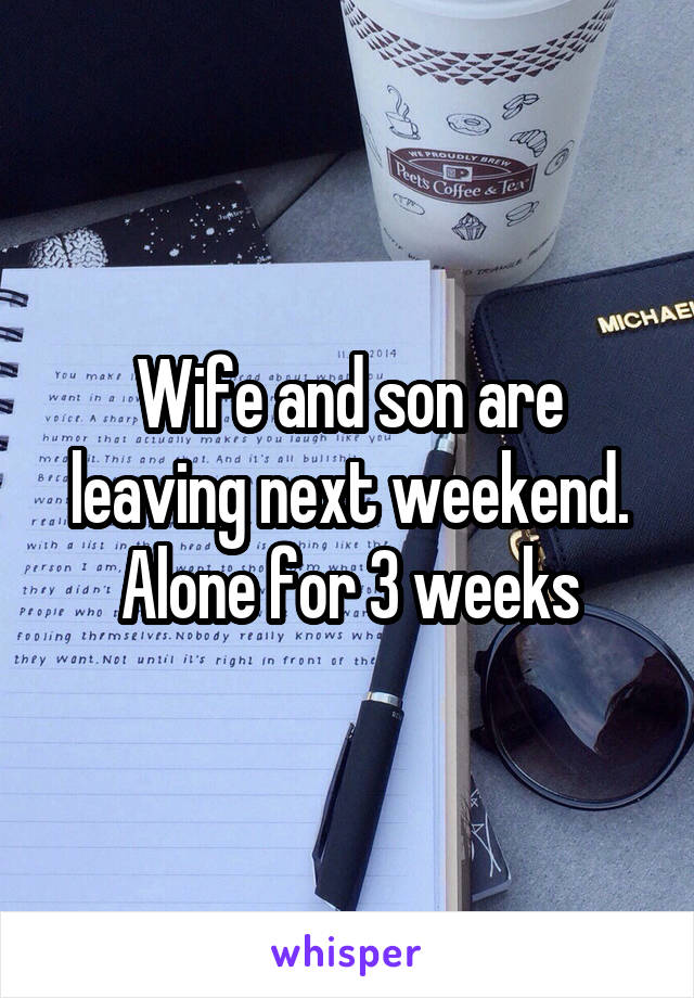 Wife and son are leaving next weekend. Alone for 3 weeks