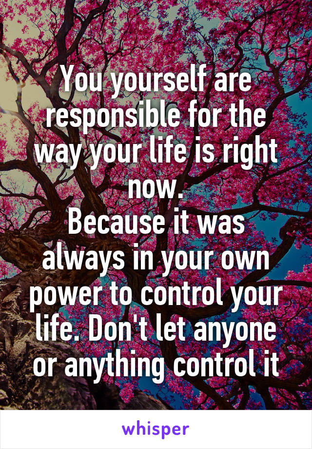 You yourself are responsible for the way your life is right now. Because it was always in your own power to control your life. Don't let anyone or anything control it