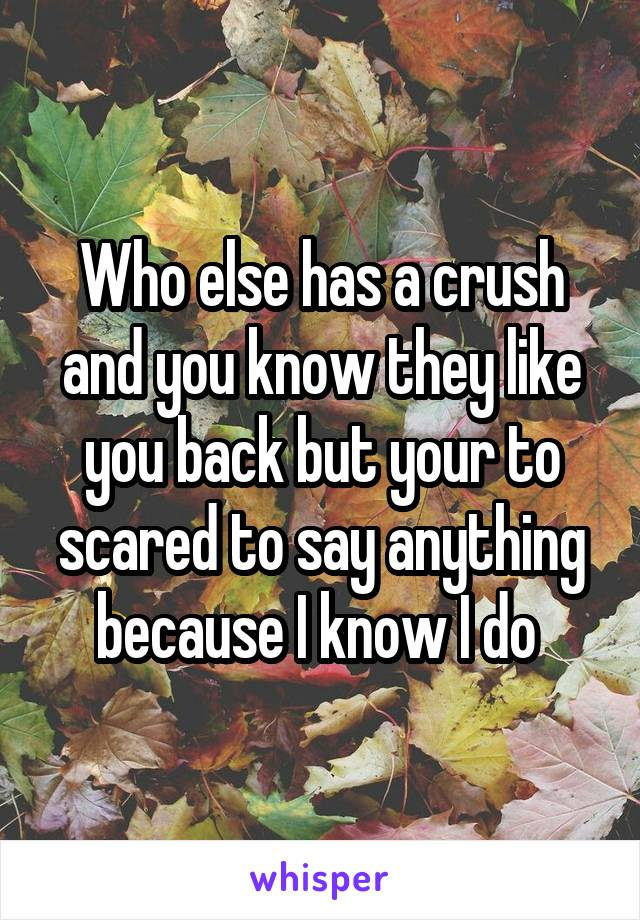 Who else has a crush and you know they like you back but your to scared to say anything because I know I do