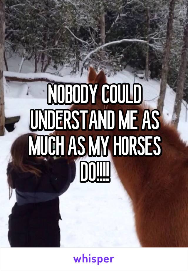 NOBODY COULD UNDERSTAND ME AS MUCH AS MY HORSES DO!!!!