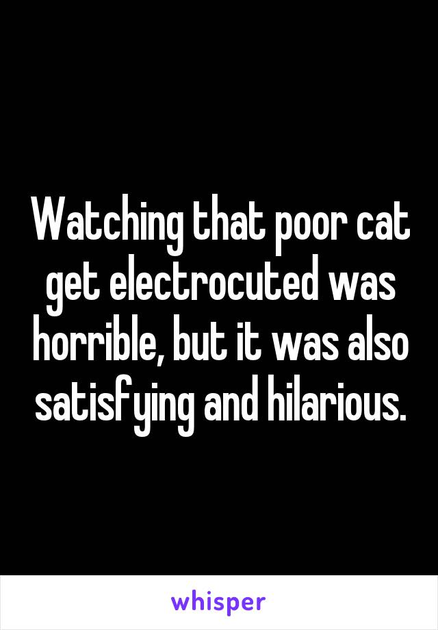 Watching that poor cat get electrocuted was horrible, but it was also satisfying and hilarious.