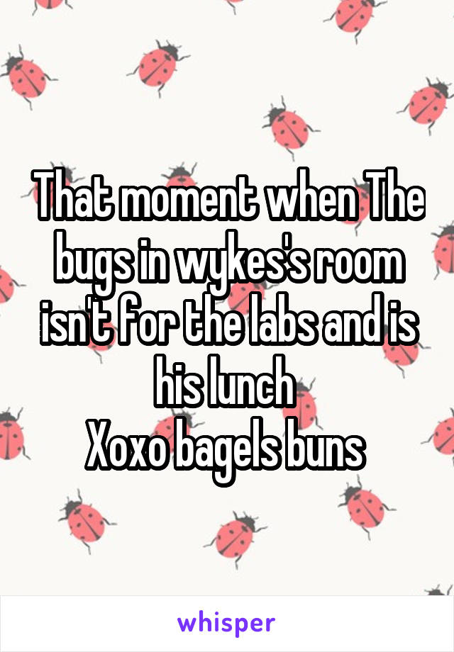 That moment when The bugs in wykes's room isn't for the labs and is his lunch  Xoxo bagels buns