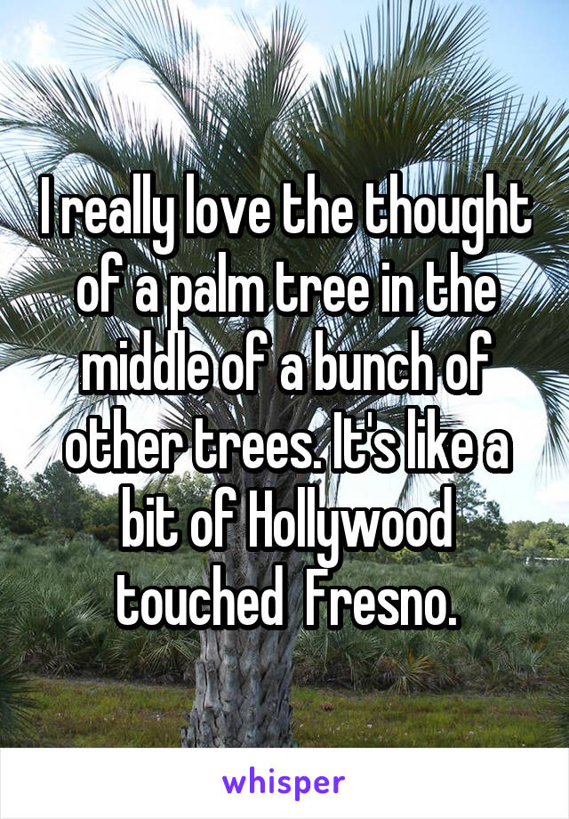 I really love the thought of a palm tree in the middle of a bunch of other trees. It's like a bit of Hollywood touched  Fresno.