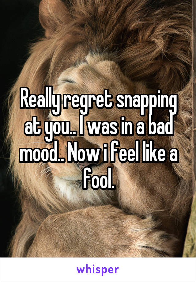 Really regret snapping at you.. I was in a bad mood.. Now i feel like a fool.