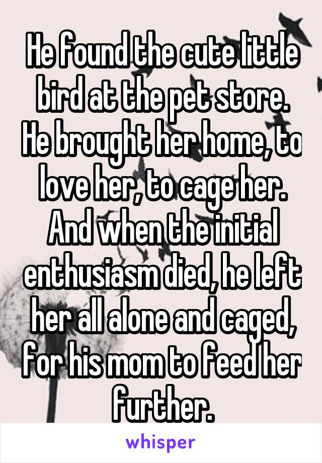 He found the cute little bird at the pet store. He brought her home, to love her, to cage her. And when the initial enthusiasm died, he left her all alone and caged, for his mom to feed her further.