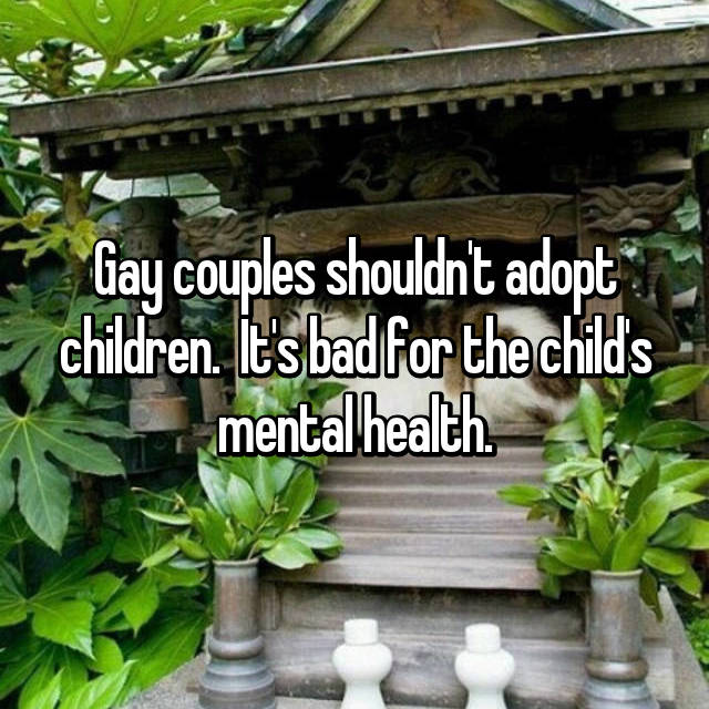 Gay couples shouldn't adopt children.  It's bad for the child's mental health.