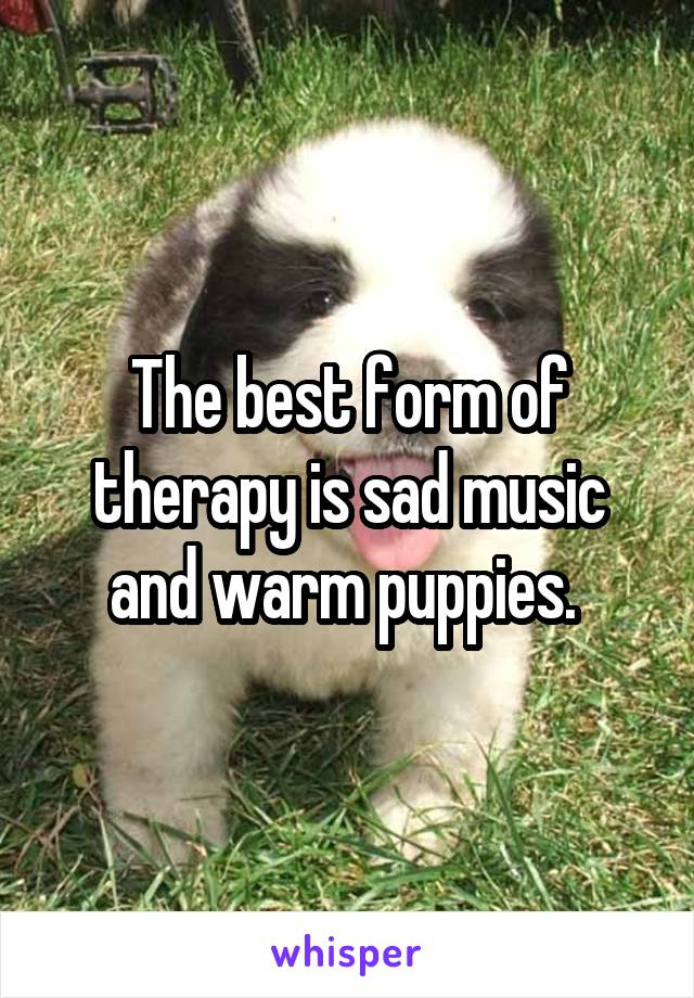 The best form of therapy is sad music and warm puppies.